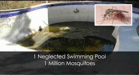 millionmosquitos